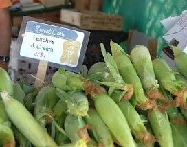 Farmer's Stand Corn