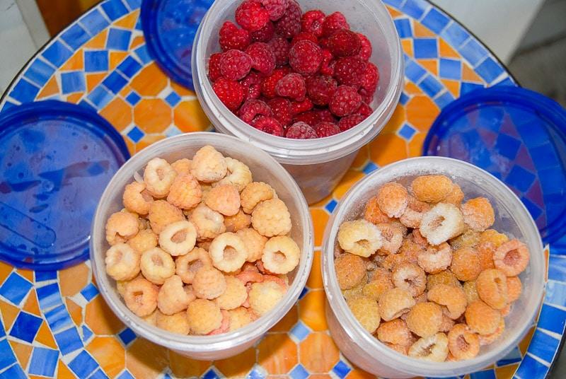 containers of frozen raspberries