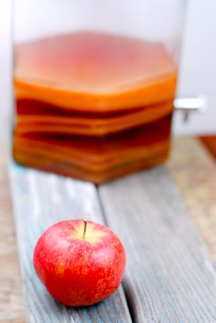 DIY Homemade Vinegar tutorial. Simple instructions to make vinegar at home. It's easy and you'll never believe how fantastic vinegar can taste! Great for gifts too. BoulderLocavore.com