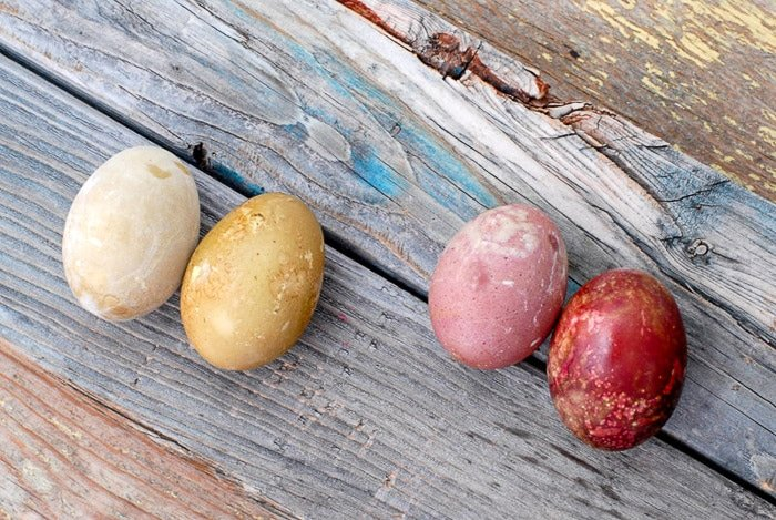 natural dye easter eggs oiled and unoiled