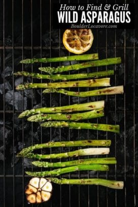 Wild asparagus on a grill title image