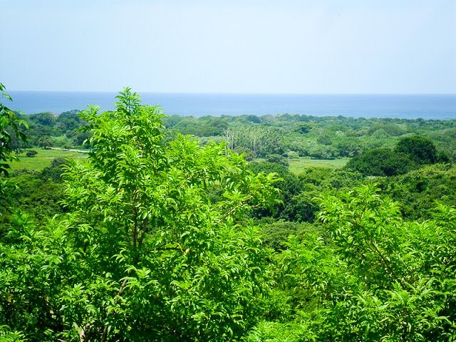 Hacienda Pinilla, Guanacaste, Costa Rica - BoulderLocavore.com
