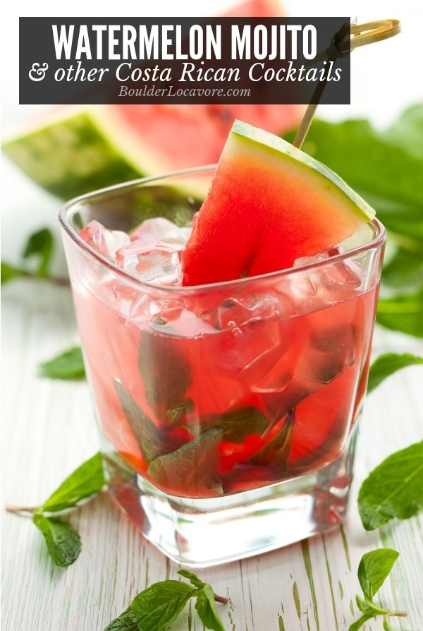 Watermelon Mojito cocktail and other Costa Rican cocktails title image