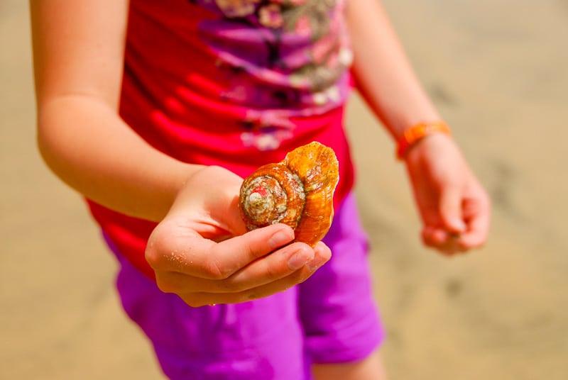 Girl's hand holding orange shell on Costa Rica beach