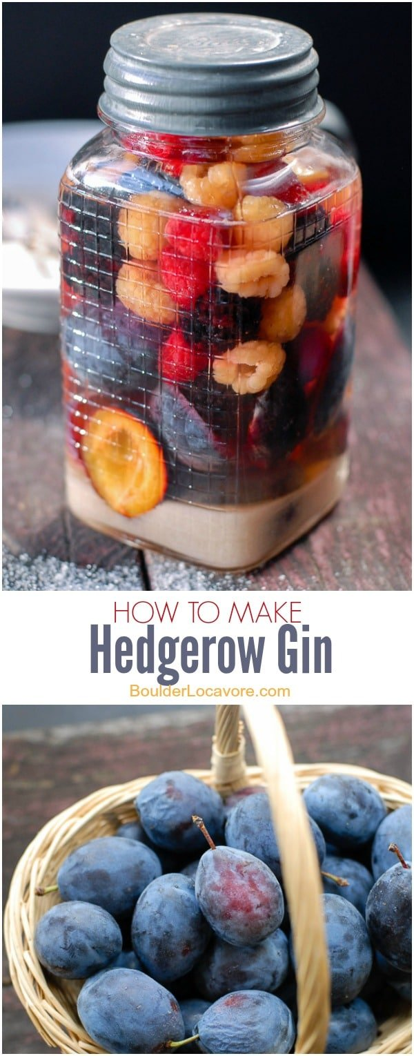 How to Make Hedgerow Gin. A simple liqueur made with gin, sugar and hedge-grown fruits (or delicious substitues for those without headges) | BoulderLocavore.com