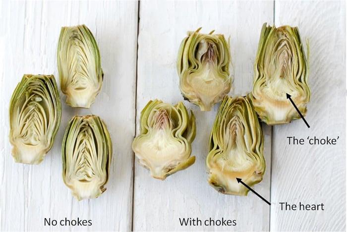 artichoke illustration of chokes or no chokes