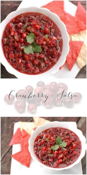 Cranberry Salsa. Sweet and spicy; a perfect appetizer for holiday entertaining! BoulderLocavore.com