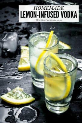 Homemade Lemon Vodka title image