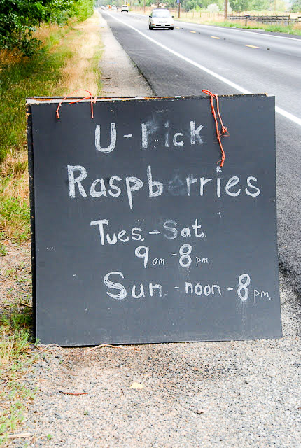 U-Pick Raspberry Farm chalkboard roadside sign in Boulder Colorado BoulderLocavore.com