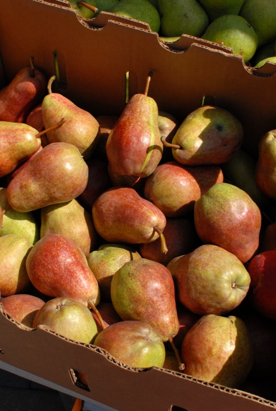 Vail Farmers Market Pears