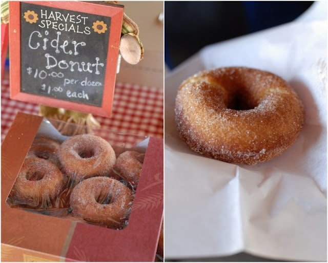 2 photo collage with Fresh Apple Cider Donuts in box on left and single donut on right