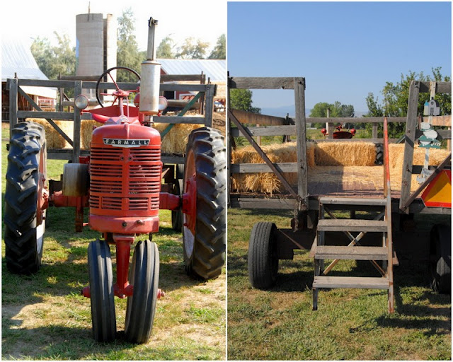 2 photo collage with Red Tractor for hay rides on left and riding bed with hay bales on right