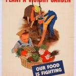 Victory Gardens: In History and My Own