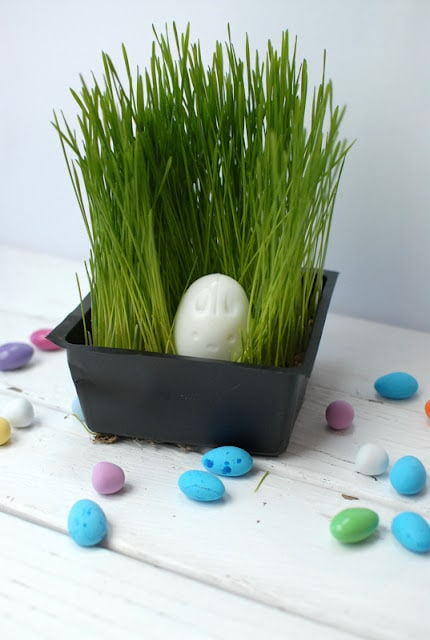 pressed hard boiled eggs and candy