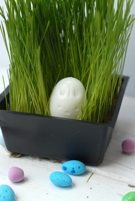bunny shaped hard boiled egg in grass