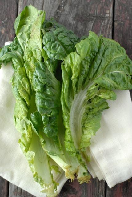 Organic Mustard Greens | BoulderLocavore.com