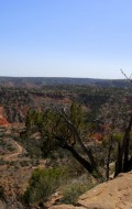 Palo Duro Canyon and Where the Locals Eat in Lubbock Texas