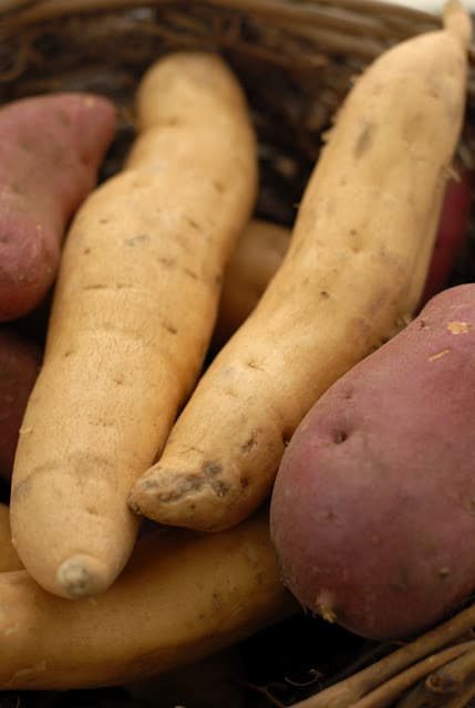 Sweet Potatoes | BoulderLocavore.com