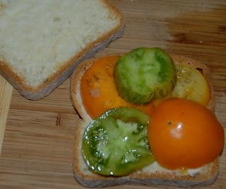 colorful tomatoes on sandwich