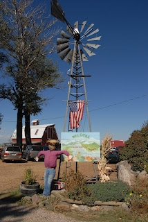 windmill and scarecrow at Berry Patch Farms Brighton CO