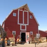 Berry Patch Farms: Pick-Your-Own and Country Harvest Festival (Brighton, CO)
