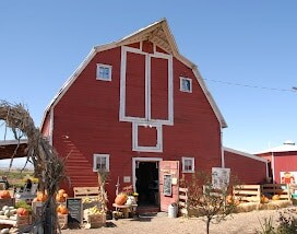 red barn at Berry Patch Farms harvest time