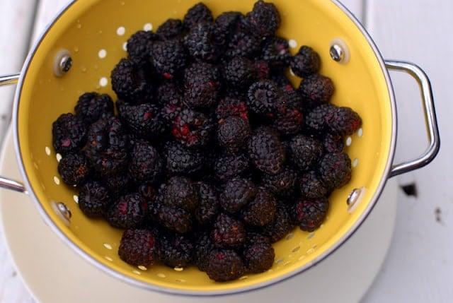 black raspberries in yellow colander