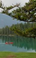 Lac Beauvert at the Fairmont Jasper Park Lodge | BoulderLocavore.com