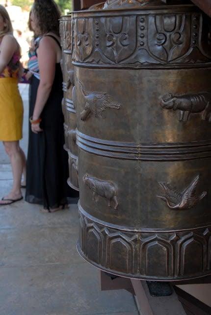 animal drums at Denver zoo