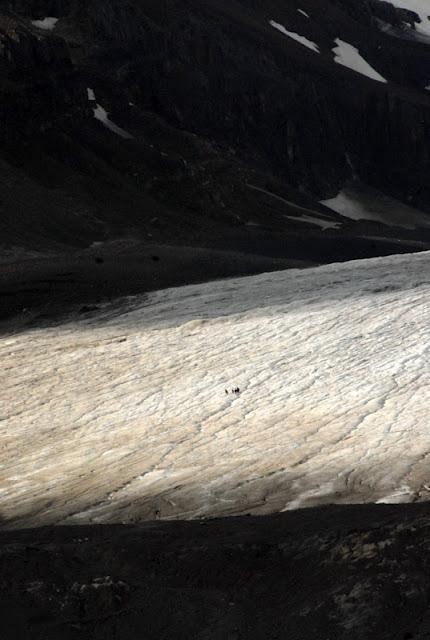 Canadian Rockies Glacier | BoulderLocavore.com