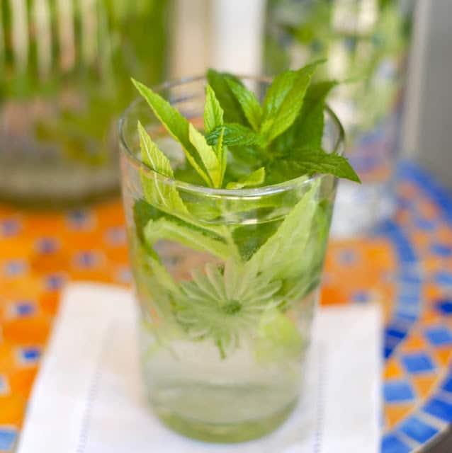 Mint Water | BoulderLocavore.com