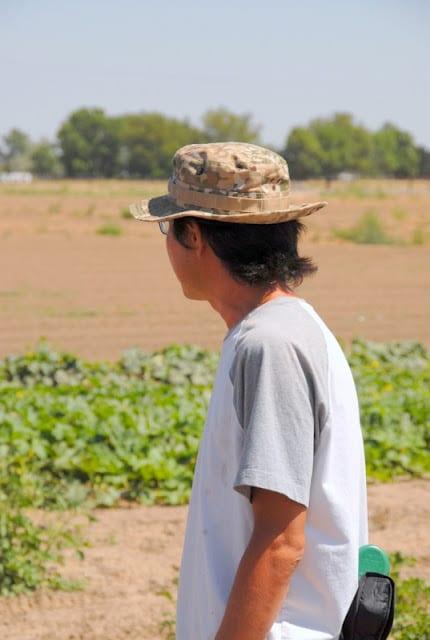 man looking at farm
