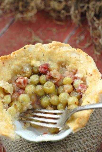 gooseberry pie filling with fork