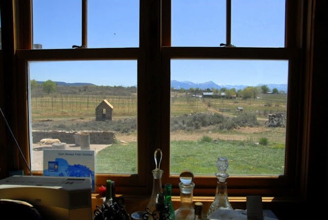 A glass of wine next to a window in southern colorado