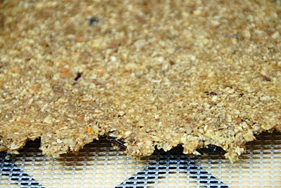A close up of cranberry granola