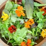 Great Salad Dressing recipes and Perfect Spring Gift Idea!