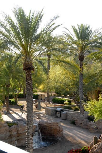 Arizona in spring time | BoulderLocavore.com