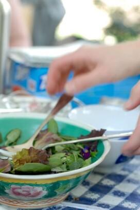 Urban Foraging: Salad