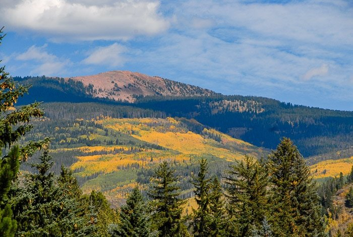 fall colors in the Vail Colorado mountains