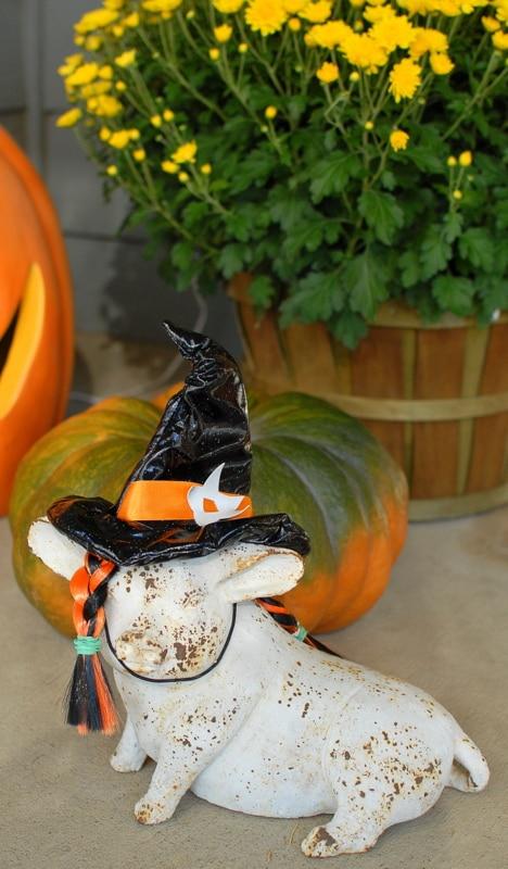 Best Tips for Gluten-Free Halloween | BoulderLocavore.com