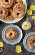 YaYa Farm & Orchard: U-Pick Apples and Baked Apple Cider Donut recipe (gluten free)