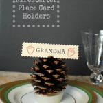Pine Cone Firestarter Place Card Holder | BoulderLocavore.com