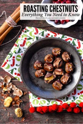 Roasting Chestnuts title image