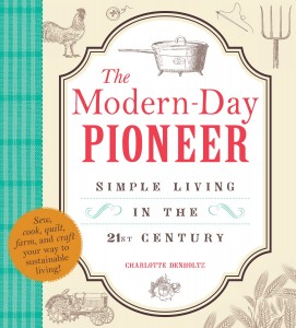 The Modern-Day Pioneer book cover