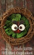 How to Make Gluten Free Owl Cupcakes | BoulderLocavore.com DSC_0211-003