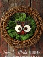 How to Make Gluten Free Owl Cupcakes   BoulderLocavore.com DSC_0211-003