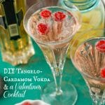 DIY Tangelo-Cardamom Vodka & a Valentine's Cocktail!
