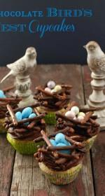 Chocolate Bird's Nest cupcakes   BoulderLocavore.com