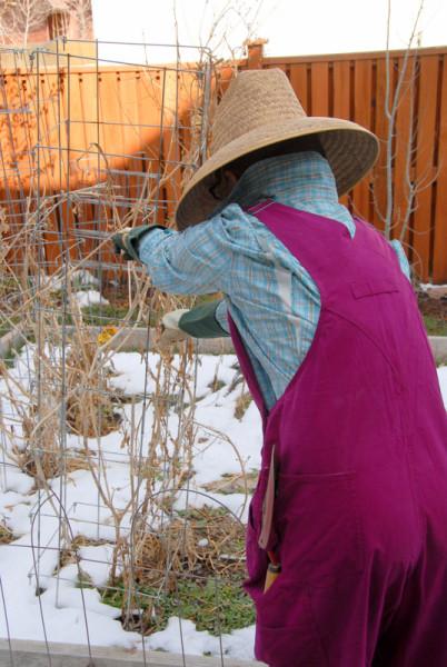 girl in pink overalls working in garden