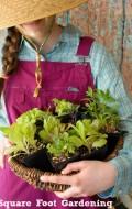 Square Foot Gardening | BoulderLocavore.com